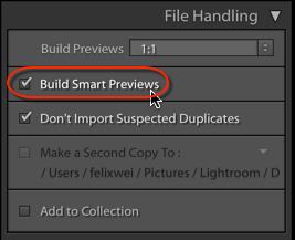 smart previews-1