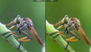 Membandingkan Foto Sebelum dan Setelah Diedit